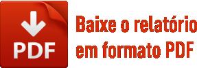 baixe-relatorio-pdf