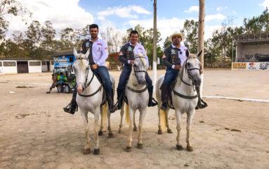 CAVALGADA 2017 (BOM CONCELHO X ARAPIRACA) PARTE 1 – RICARDO NEZINHO